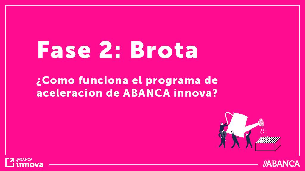 Conoce la Fase Brota del programa de aceleración ABANCA Innova